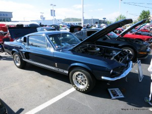 2014 Magic City Ford Roanoke Show 013