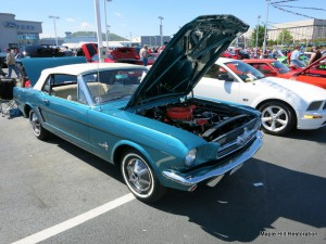 2014 Magic City Ford Roanoke Show 032