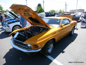 2014 Magic City Ford Roanoke Show 033